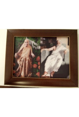 "Plastic Photo Frame 7""X 9"""