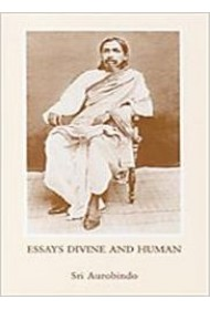 Essays Divine and Human