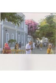 Post Card - 019 (Ambience around the Sri Aurobindo Ashram)