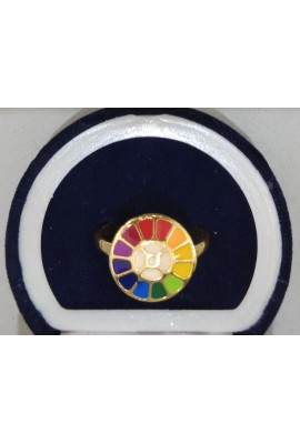 Brass Ring Regular - Multi Colour Symbol