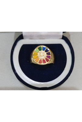 Brass Thick Ring - Multi Colour Symbol
