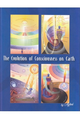 The Evolution of Consciousness on Earth