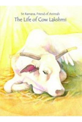 The Life of Lakshmi the Cow